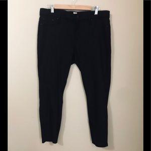 GAP Pants - NWOT Gap Black 14 Petite Leggings